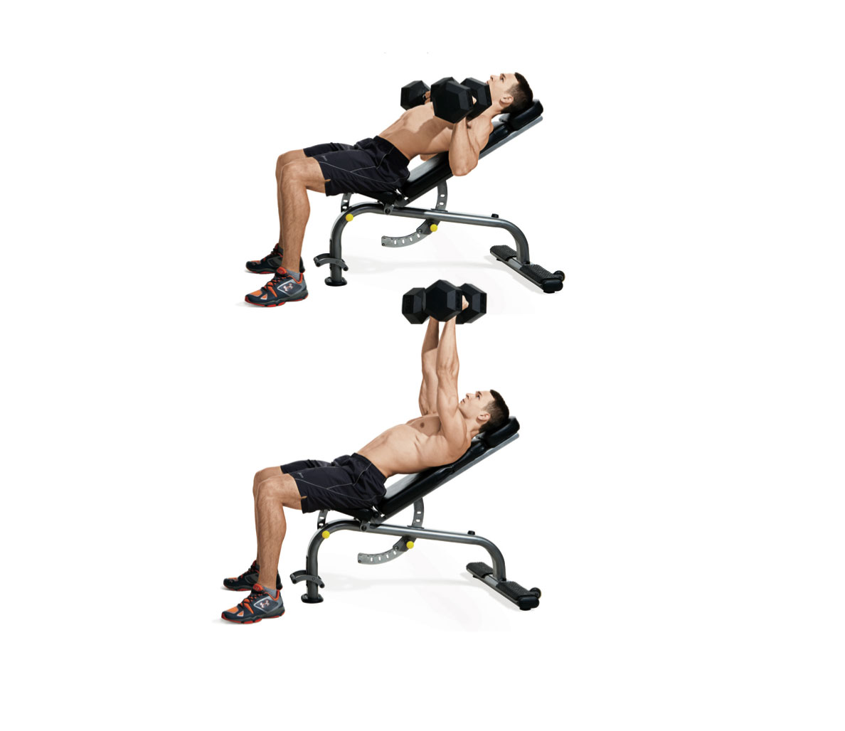 Incline dumbbell press for upper chest muscle growth