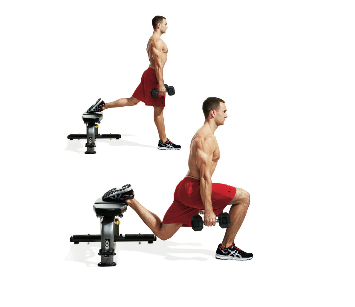 Dumbbell training for muscle growth