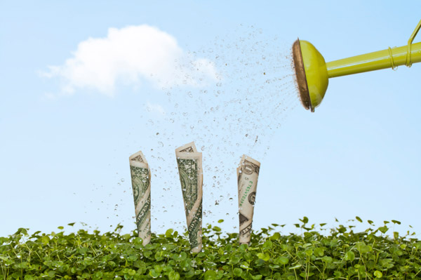 money in grass with watering can