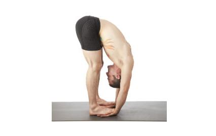 standing forward bend yoga pose
