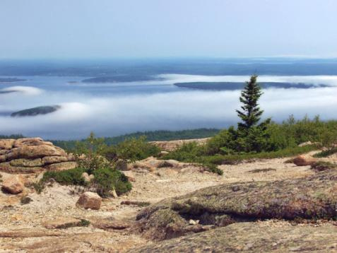 Acadia Mountain Trail Maine