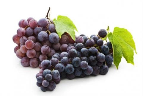 bunches of red grapes