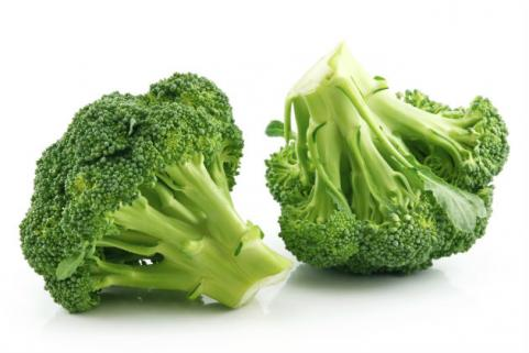 bunches of broccoli on white background
