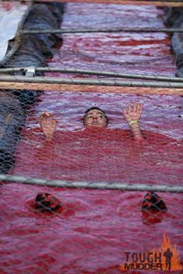 cage crawl obstacle tough mudder