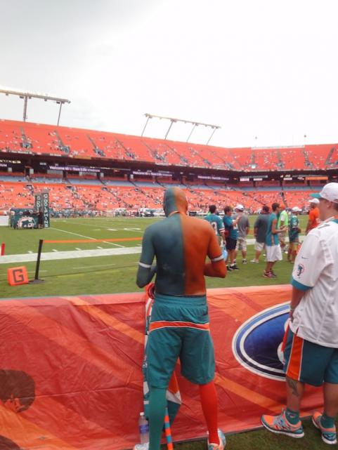 Miami Dolphins fan painted in dolphins colors