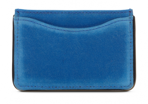 blue credit card holder