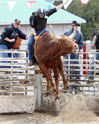 bull riding in Texas