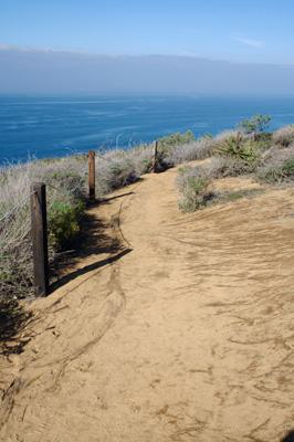 Parry Grove Trail and High Point Trail Torrey Pines State Reserve California