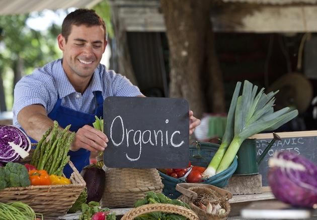 man working at natural organic food stand