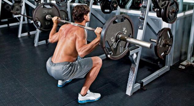 Squat Exercise Alternative