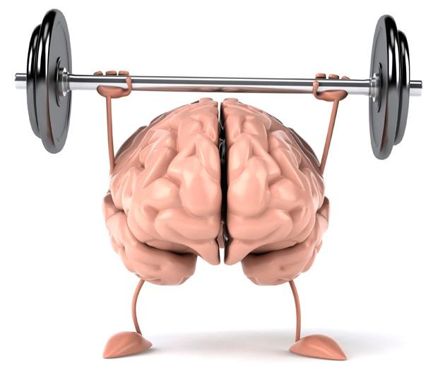 Exercise Feeds Your Brain