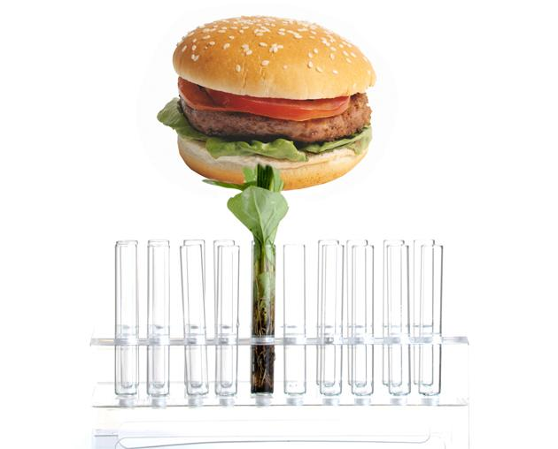 Lab-Grown Hamburger to Debut