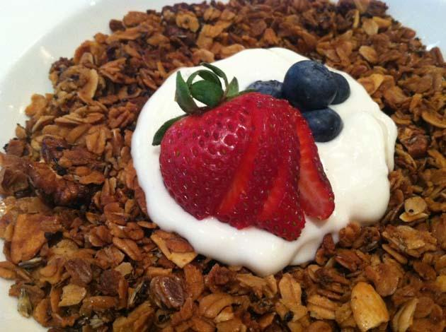 Bowl of Granola Yogurt and Berries
