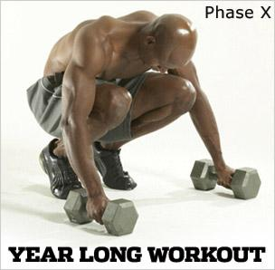 Year Long Workout: Phase X, Workout D