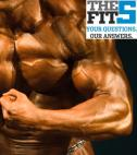 The Fit 5: Bulking Up