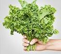 MF Super Food: Kale