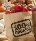 paper bag of organic food