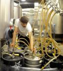 man brewing craft american beer