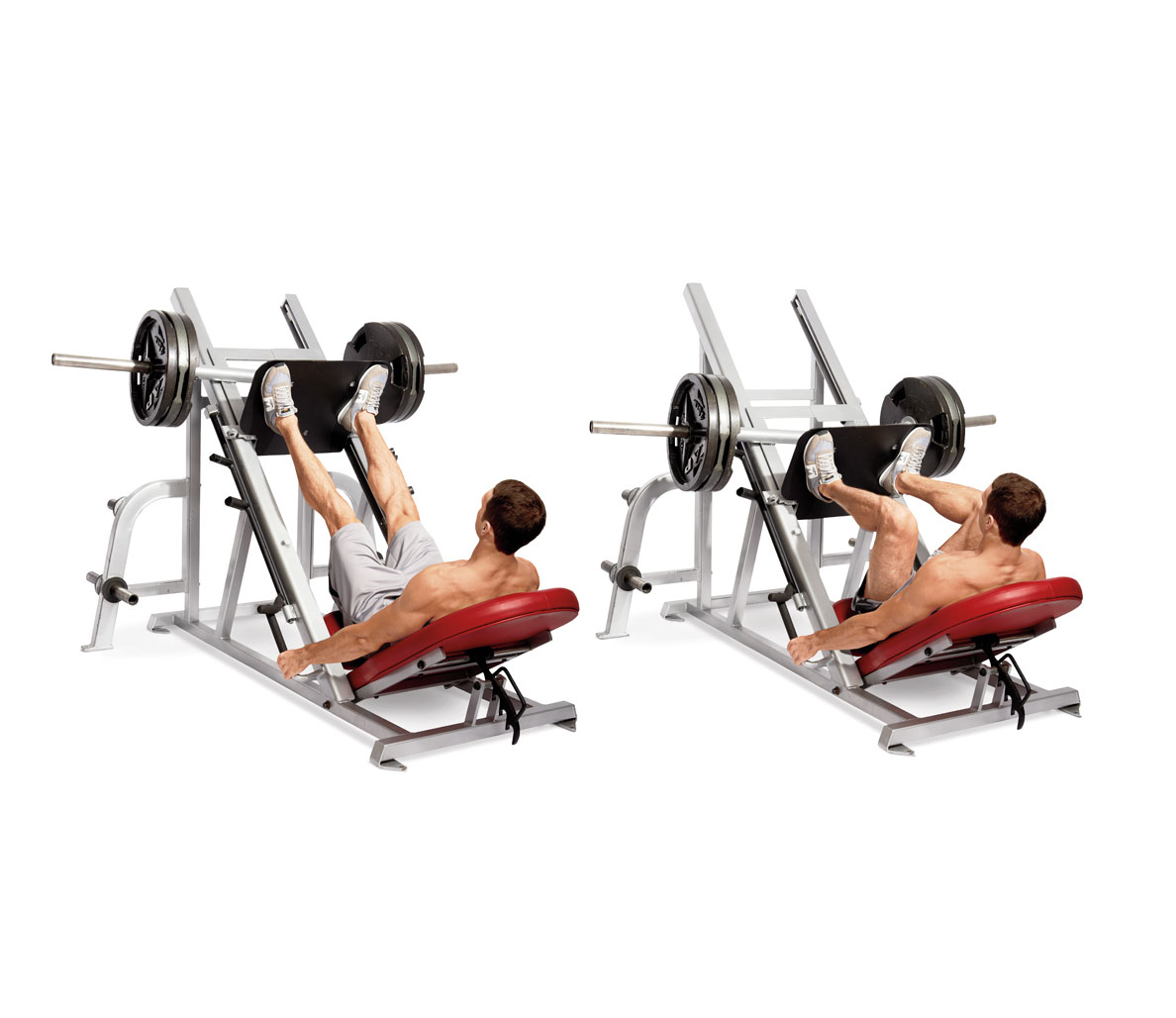 leg exercises for muscle growth