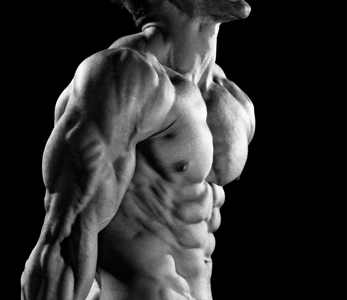 Cutting Season: The 21-Day Shred Spring 2015 Update