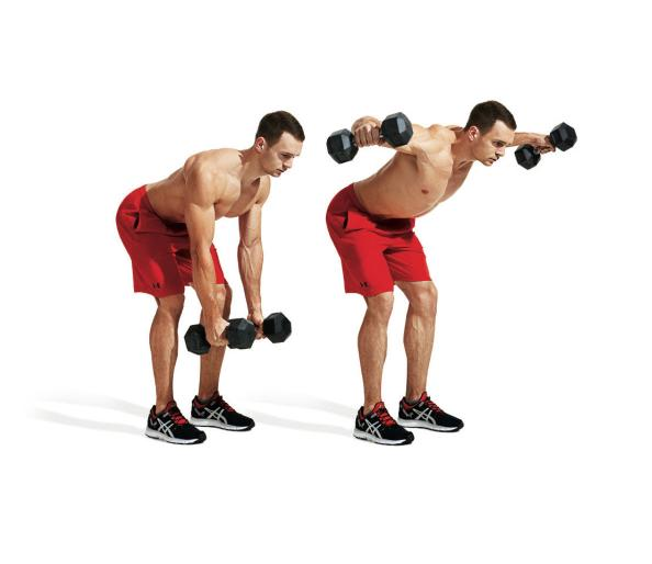 Dumbbell training full body workout