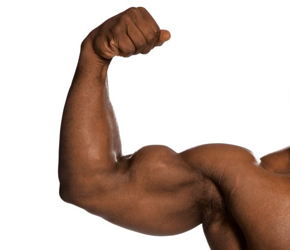 Add One Inch to Your Arms - Build Muscle Fat