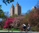 New York City's Best Cycling Routes