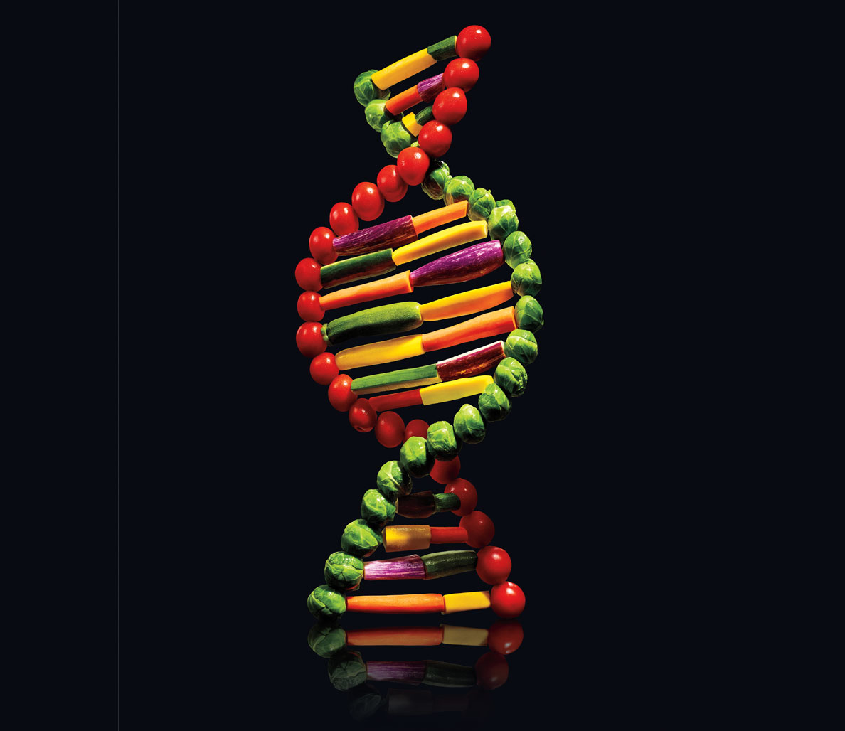 Tap into Your DNA to Lose 33% More Weight